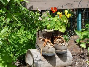 Hiking Boots, Emerald Lake, Yoho National Park